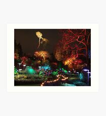 Night in the Sunken Garden (3) Art Print