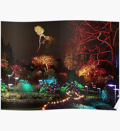 Night in the Sunken Garden (3) Poster