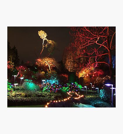 Night in the Sunken Garden (3) Photographic Print