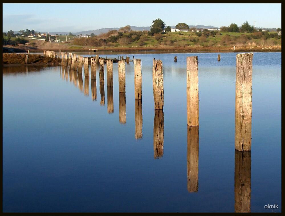 Flooded Fence by olmik