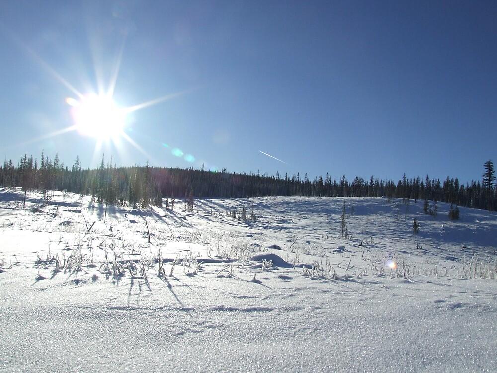 fresh winter day by madmandoug