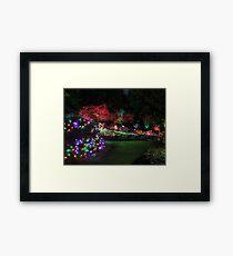 Night in the Sunken Garden (4) Framed Print