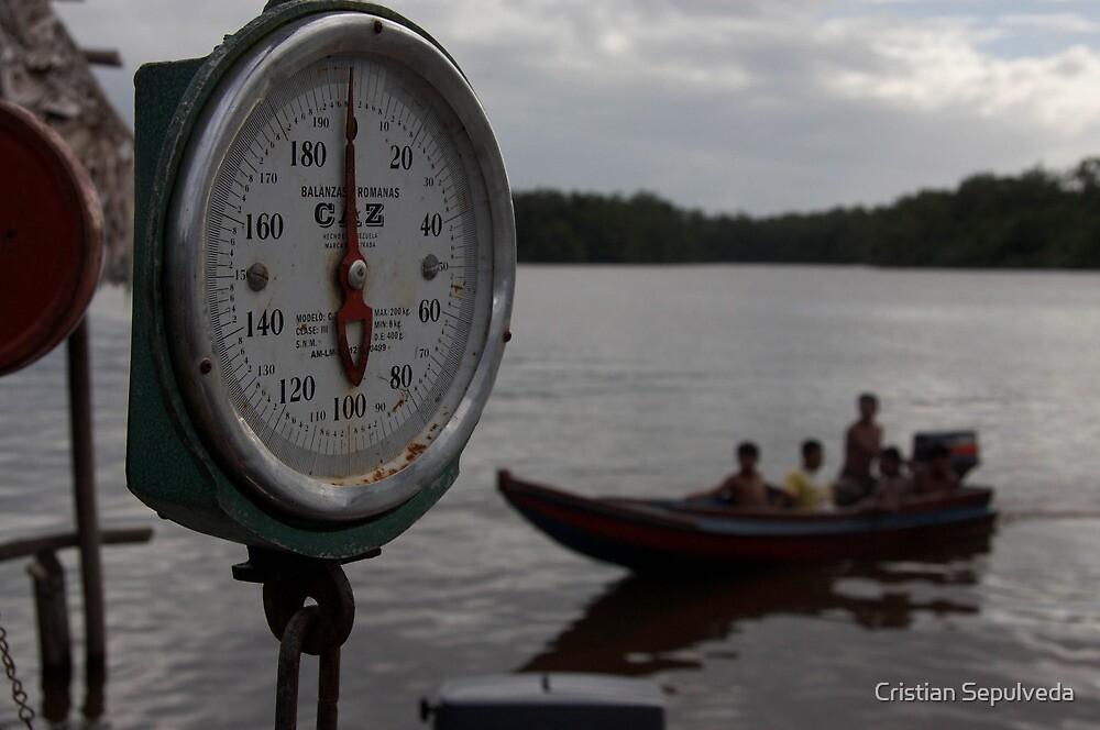 Delta Orinoco, Venezuela by Cristian Sepulveda