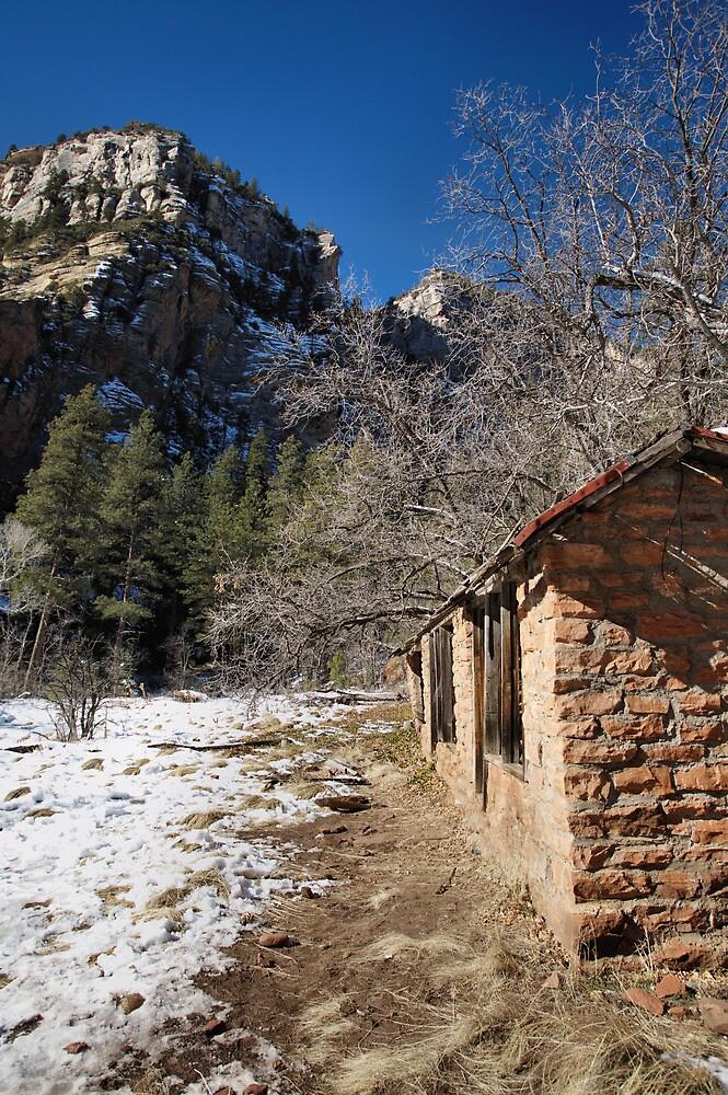 the shack #2 by jbiller
