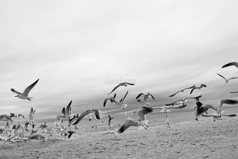 Running with Seagulls II by deahna