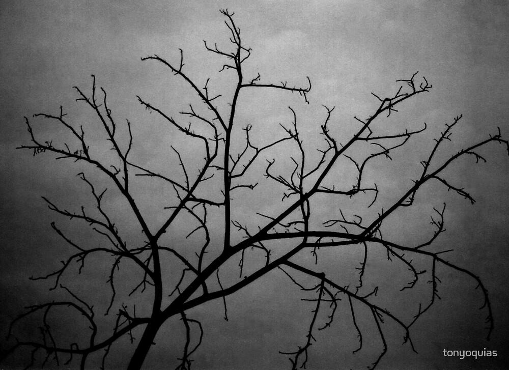 Dead Tree by tonyoquias