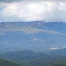 Mt Solitary - Blue Mountains, NSW by Malcolm Katon