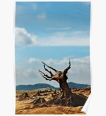 Deforestation Poster
