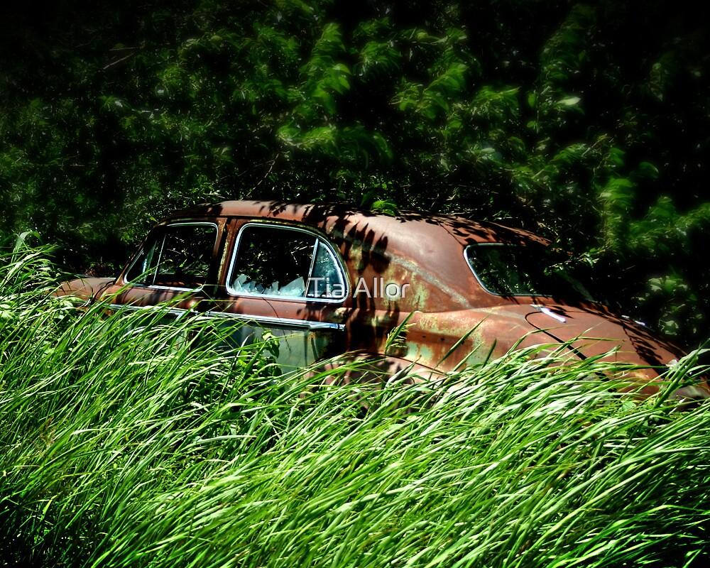 The Getaway Car by Tia Bailey