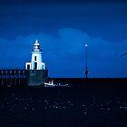 Home before dark by John Dunbar