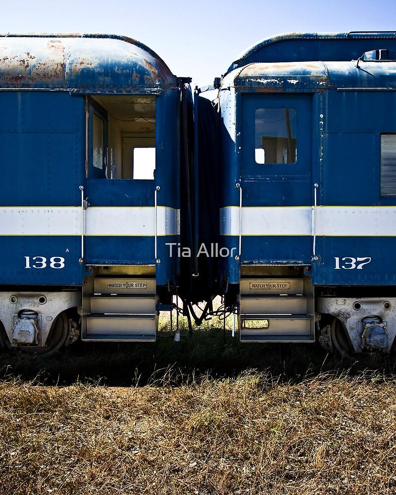 Train Cars 137-138 by Tia Bailey