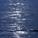 Stellar Blue.......... by deahna