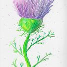 Thistle Time Again by AndiPi