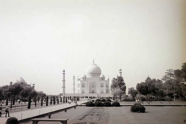 The Taj Mahal by Angie Spicer