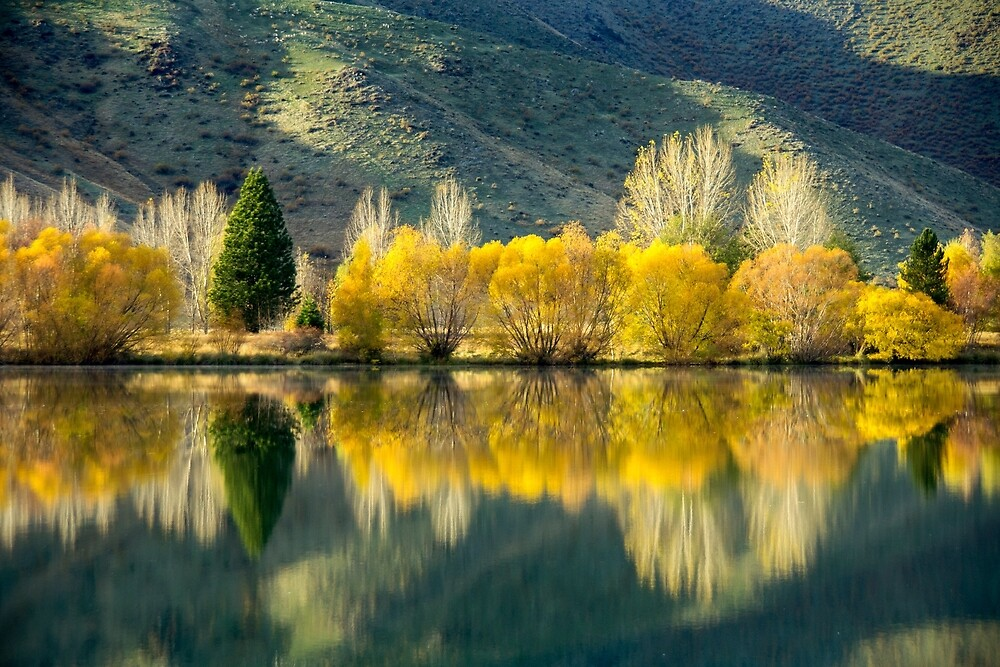 Autumn Reflections, South Island New Zealand by Andrew Goodall