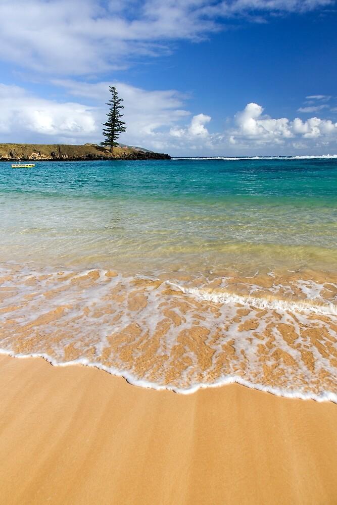 Emily Bay, Norfolk Island by Andrew Goodall