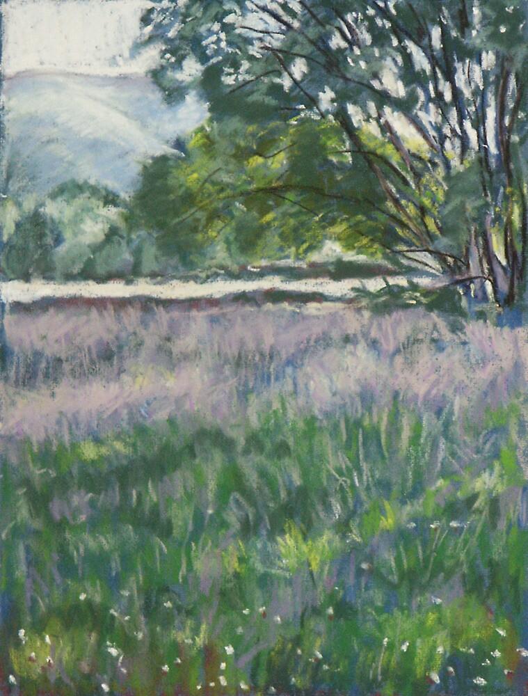 Castle Meadows, Abergavenny, Wales by Judy Adamson