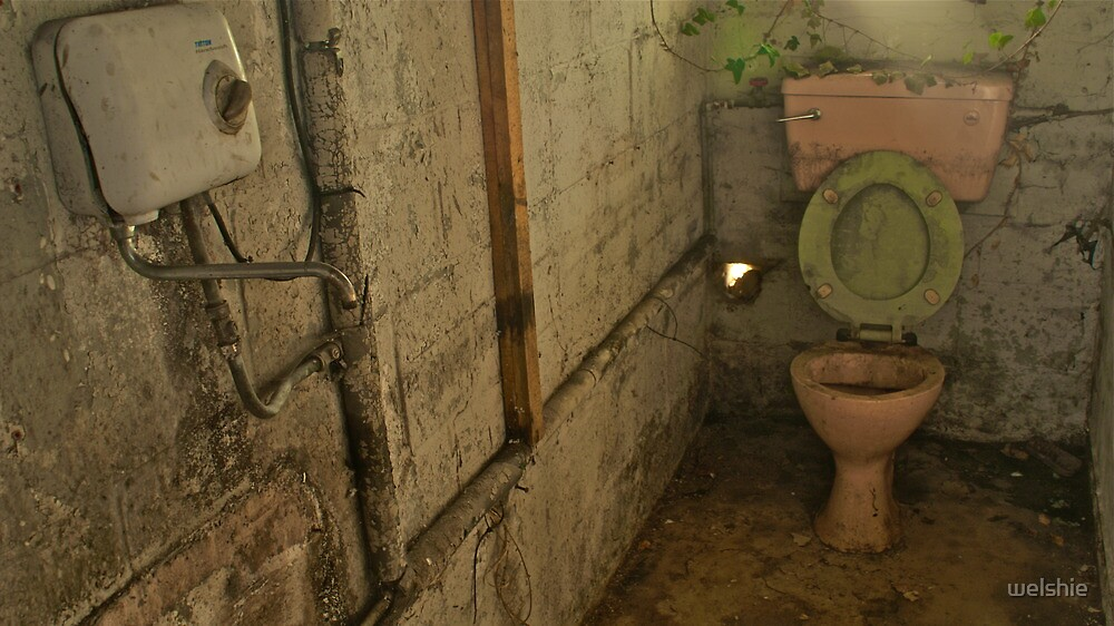 The Pink Toilet - Abandoned Building by welshie