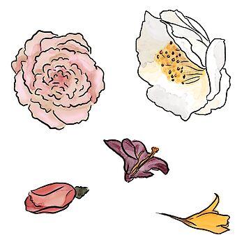 Watercolor Flowers by MrPaulin