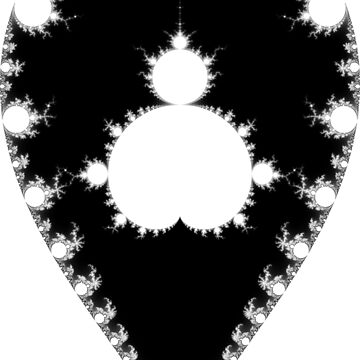 Inverted & Mandelbrot Monochrome by rupertrussell