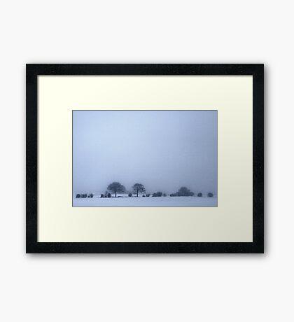 A Simple Winter  Framed Print