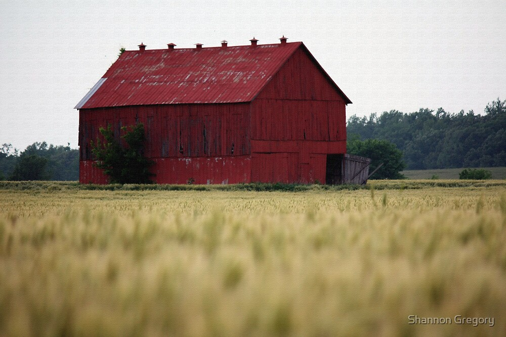 Red Barn by Shannon Gregory