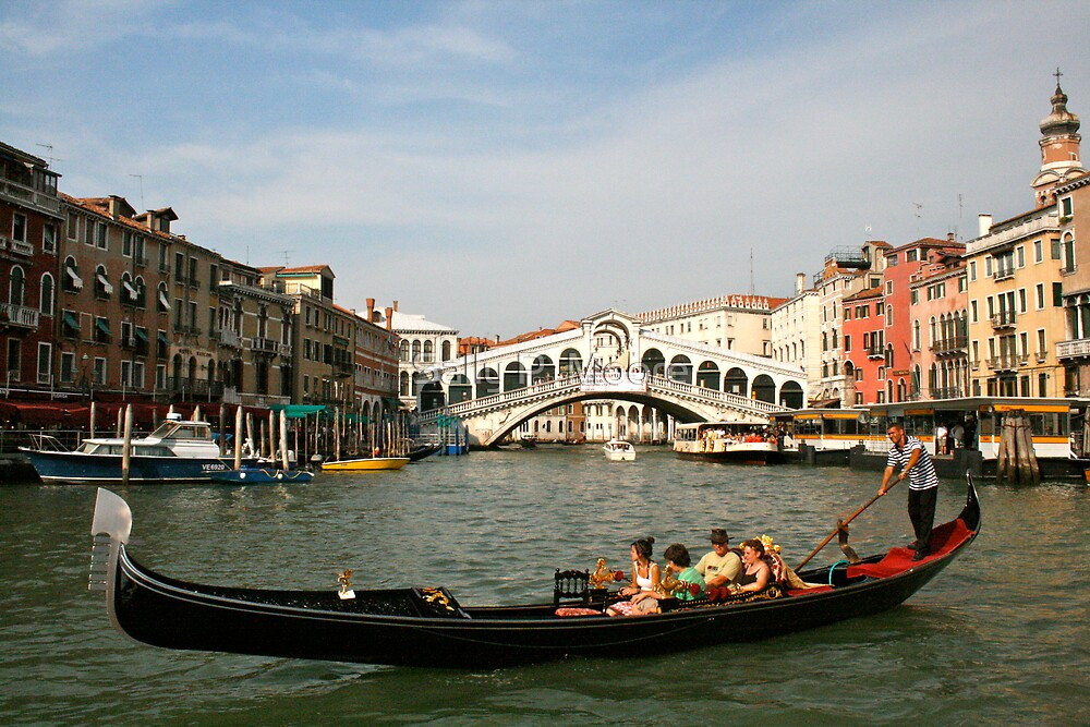 Venice One by Sally P  Moore