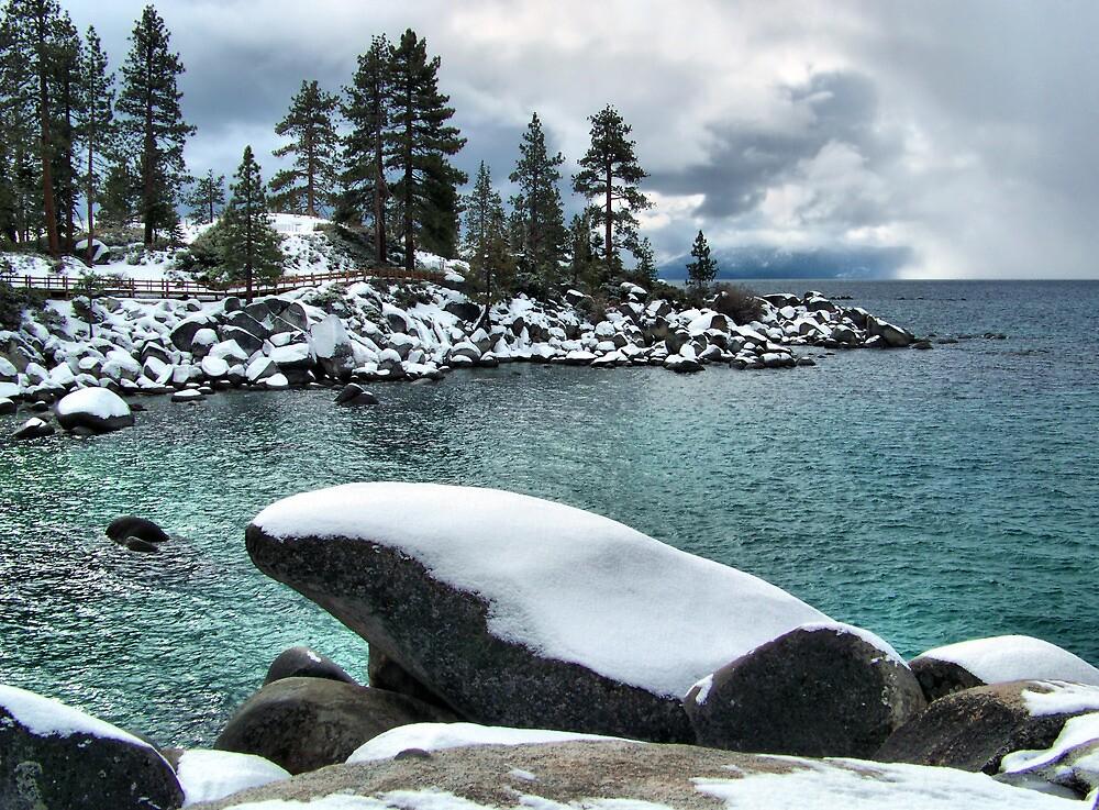 Tahoe Winter by Marylee Pope