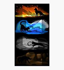 Warrior Cats: Four Elements, Four Clans Photographic Print