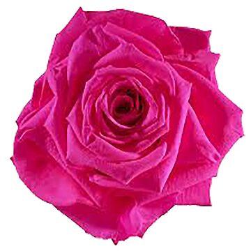 Pink roses by ViviennePoet