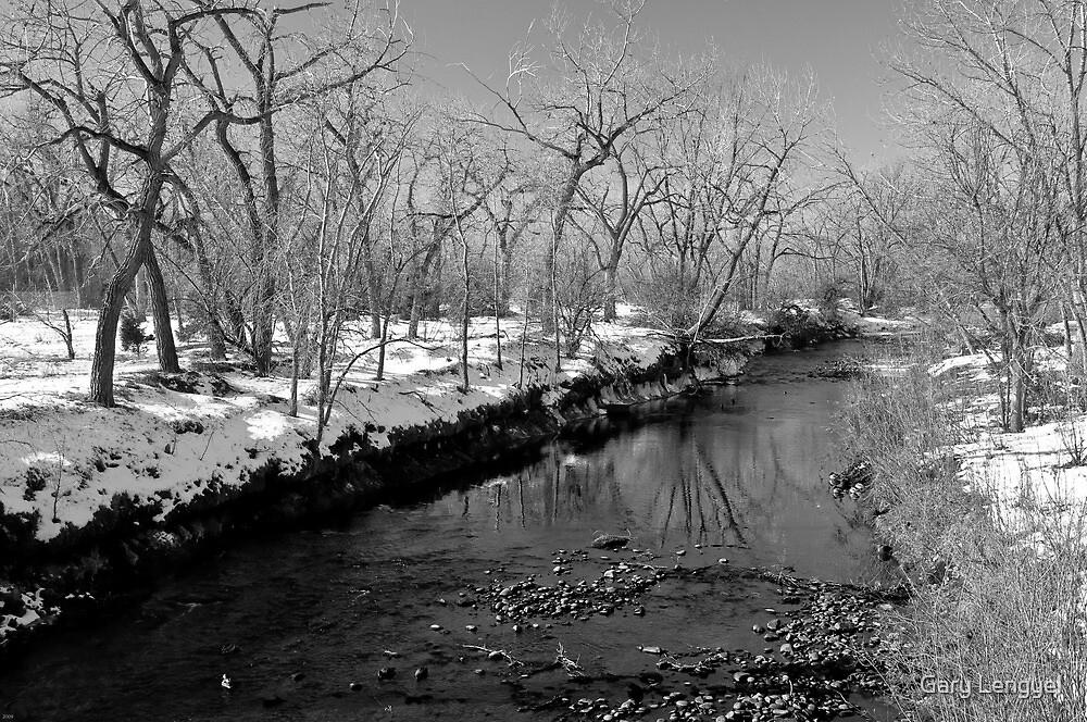 Clear Creek by Gary Lengyel