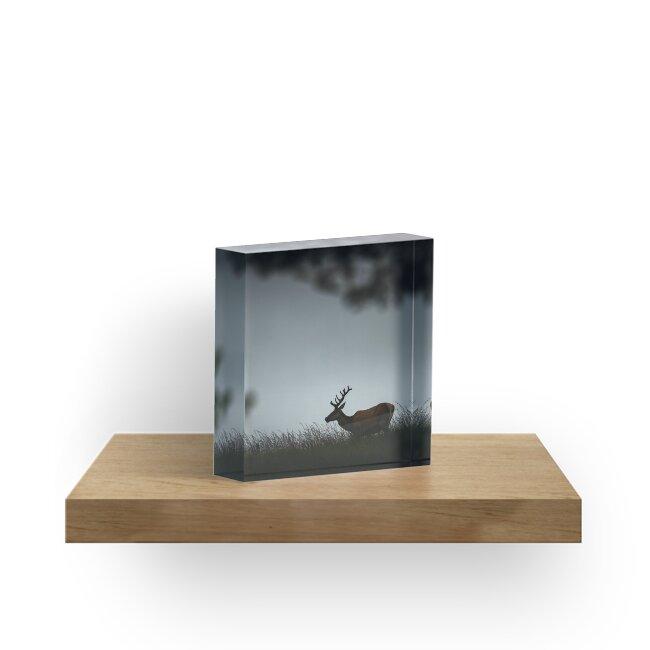 « Comme dans un rêve » par Patrice Mestari