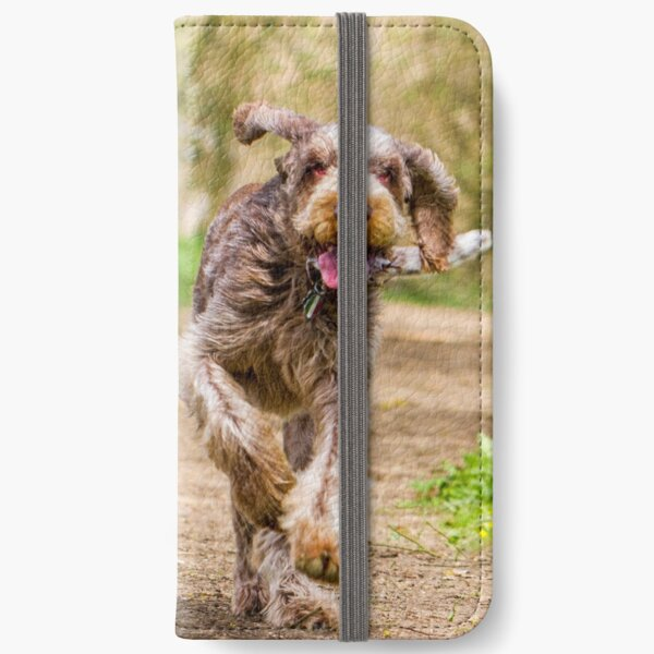 Brown Roan Italian Spinone Dog in Action iPhone Wallet