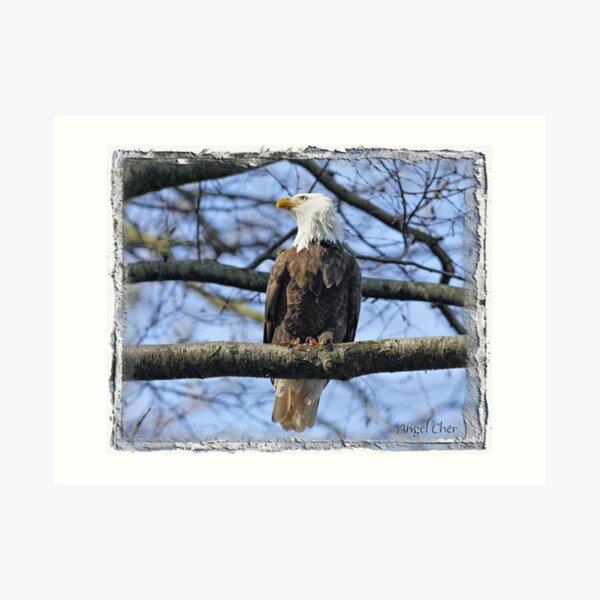 Pretty Eagle Art Print