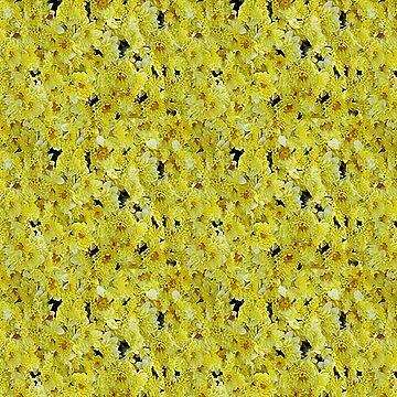 chrysanthemums by ViviennePoet