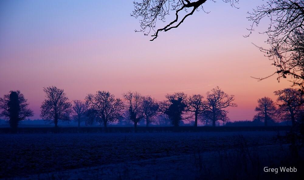 Winter Morning Over the Fields by Greg Webb
