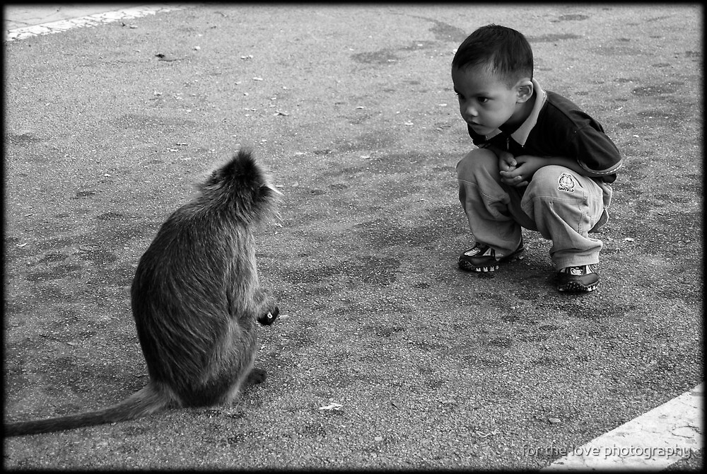 Curiosity by for the love photography