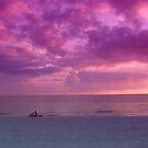 Sunset Watchers by florene welebny