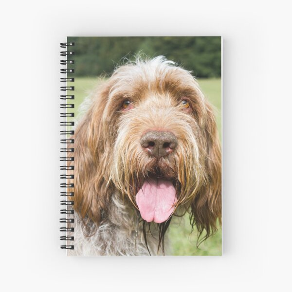 Smiling in the sunshine Spinone Spiral Notebook