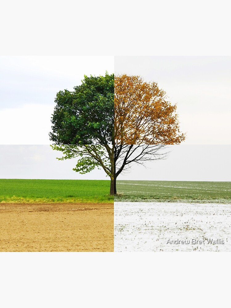 Four Seasons by ernest123
