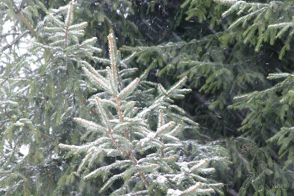snow by vinee