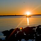 Fishing at Sunset - Tampa, Florida by rjhphoto