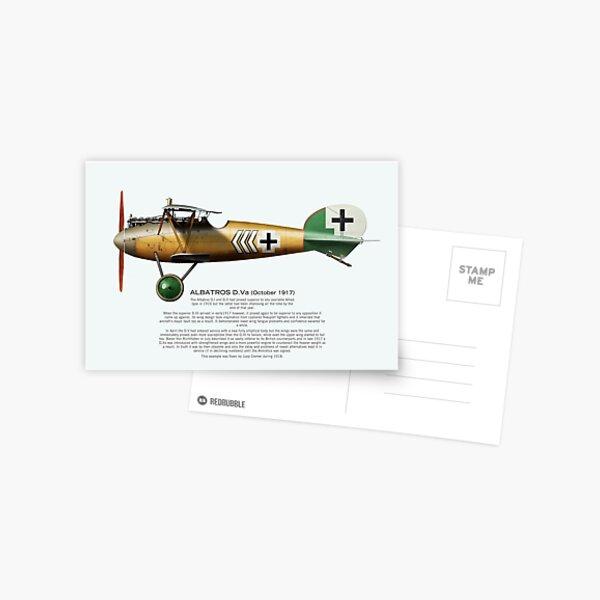 Albatros Postcard