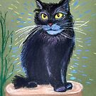 Black Cat. His name is Bayun. The personage from fairytales.The fairytales of this cat are healing. by MariaSibireva
