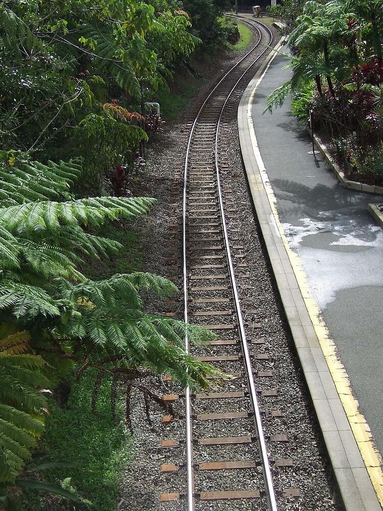 Kuranda rail  - Kuranda train station, Far North Queensland by Carissa Hubrechsen