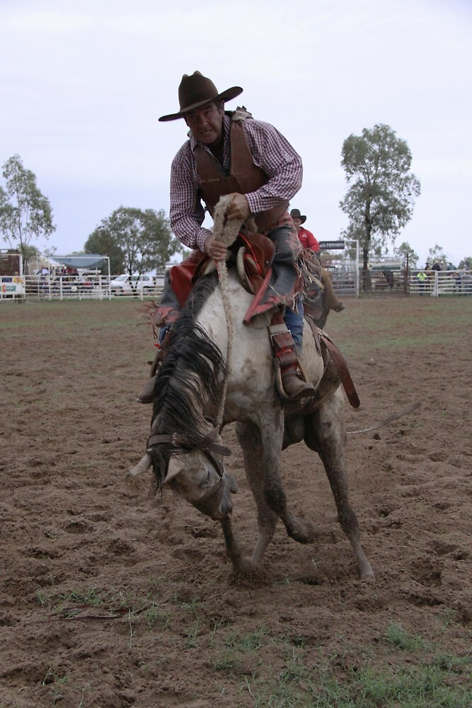 Hold on Cowboy by StaceyH