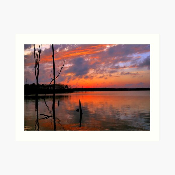 Reflection of  Color Art Print