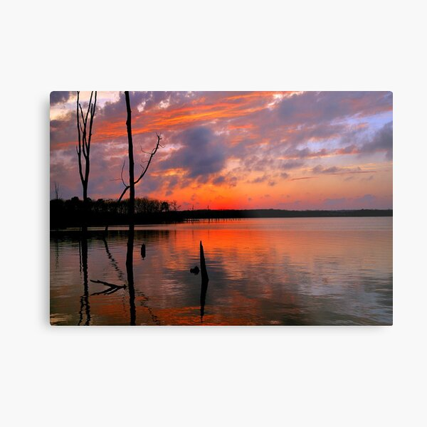 Reflection of  Color Metal Print