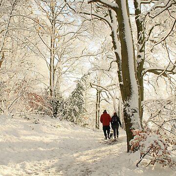 Snowy Winter Scene. by AlysonFennell