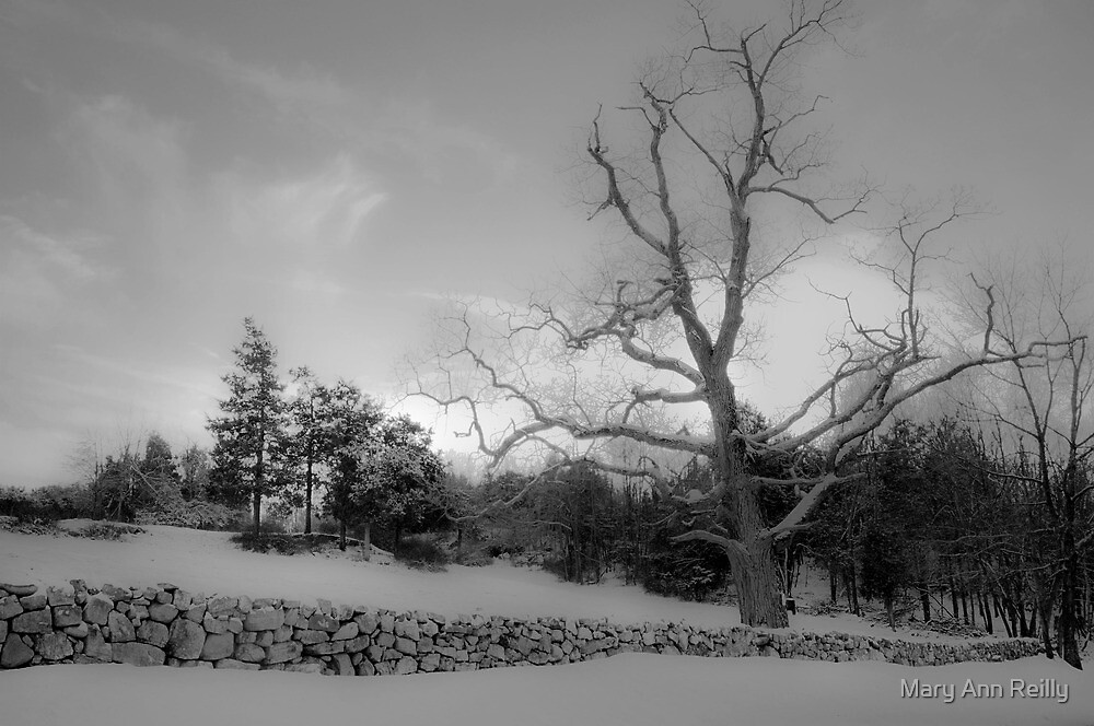 A Winter's Day by Mary Ann Reilly